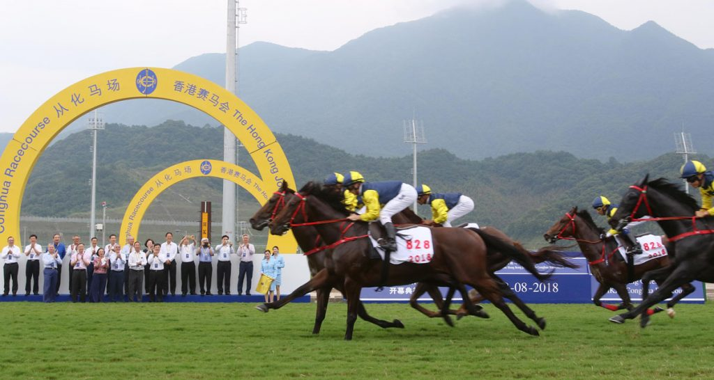 Steriline worked on a large collaboration with Hong Kong Jockey Club for the multimillion-dollar Conghua project.